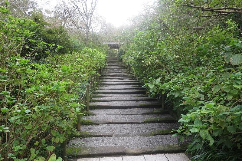 明月院境内の階段