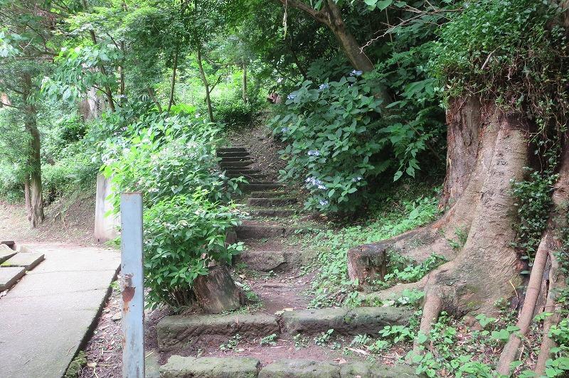 大橋太郎土牢の階段